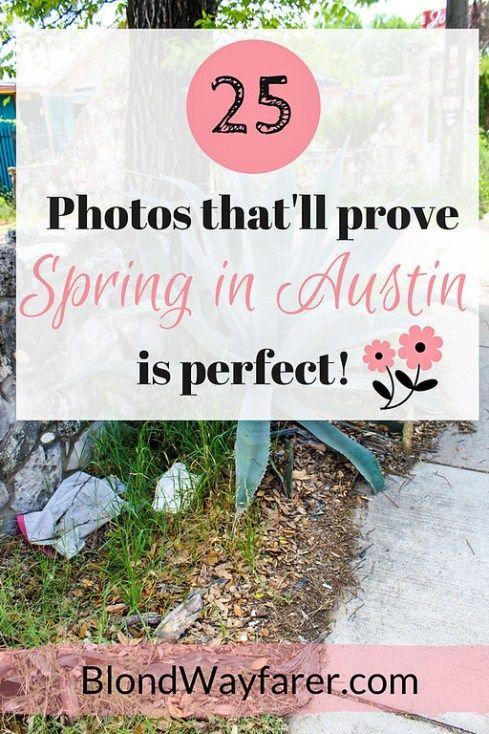 Austin Texas Travel Wanderlust Travel Photos Spring Solo Female Travel United States Vacation Spring Break