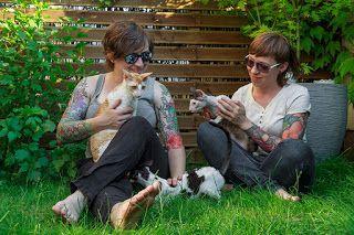 RexInk Hodowla Kotów rasy Cornish Rex