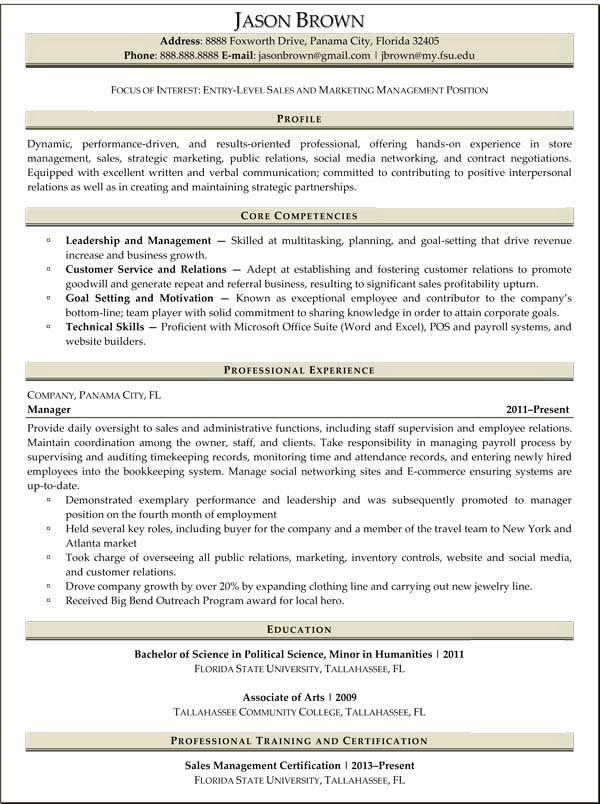 Entry Level Marketing Resume Unique Professional Resume Samples Ready Set Work Marketing Resume Professional Resume Samples Sales Resume
