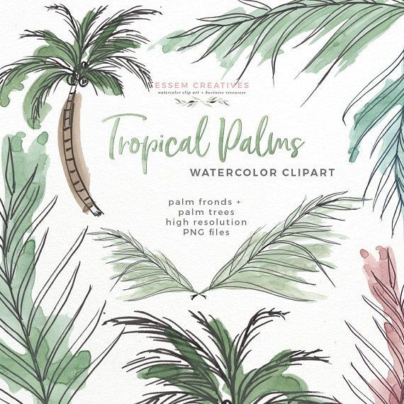 Tropical Palm Leaves Watercolor Clipart Tropical Greenery