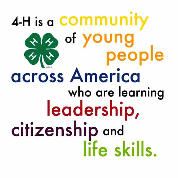 4-H: More than just your local Summer fair.