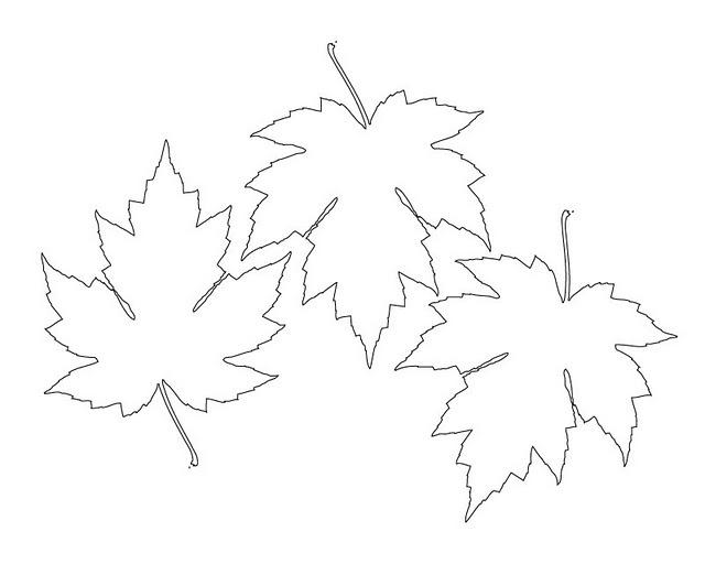 Printable Leaf Template Kids Craft Ideas Pinterest