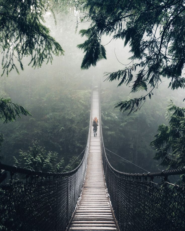 Lynn Canyon Suspension Bridge in Vancouver, BC by Valeriy Poltorak on 500px  )