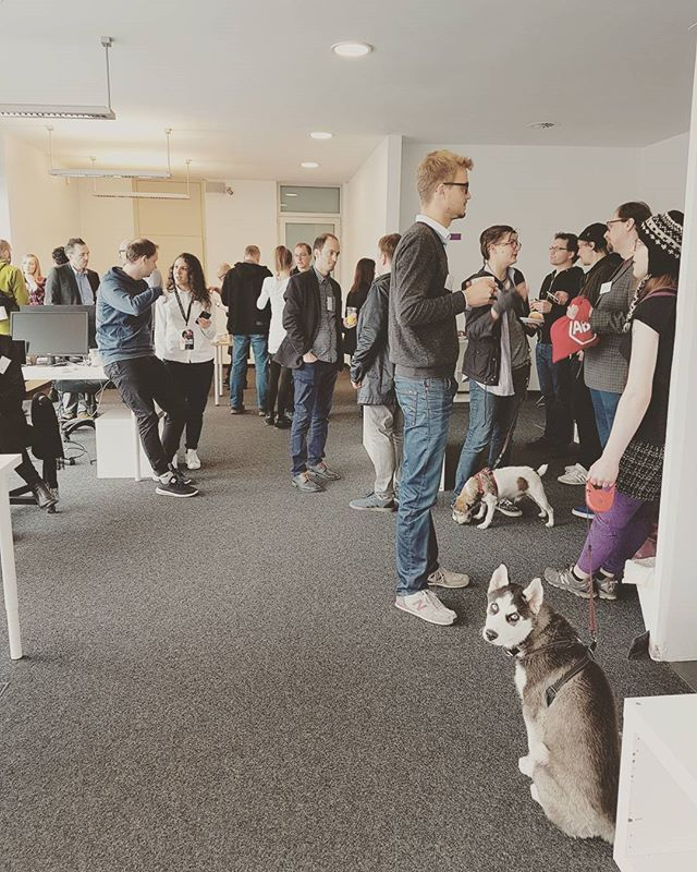 Nice atmosphere @adblockplus @flattrplus #breakfast #berlin #flattr #meetingroom #meeting #startuplife #artsy #dogsofinstagram