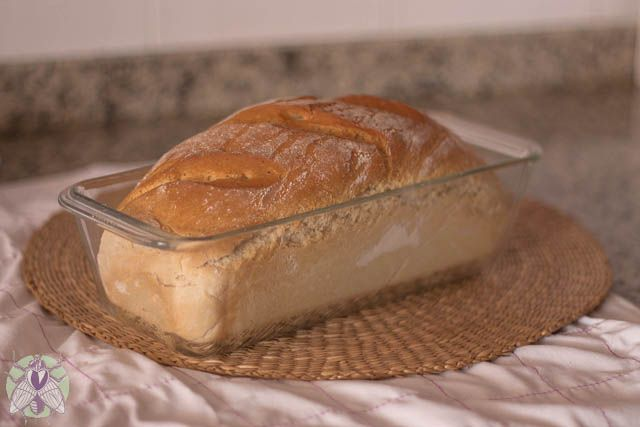 Este pan se hace en casa sin precalentar el horno y sin reposo: pan milagro