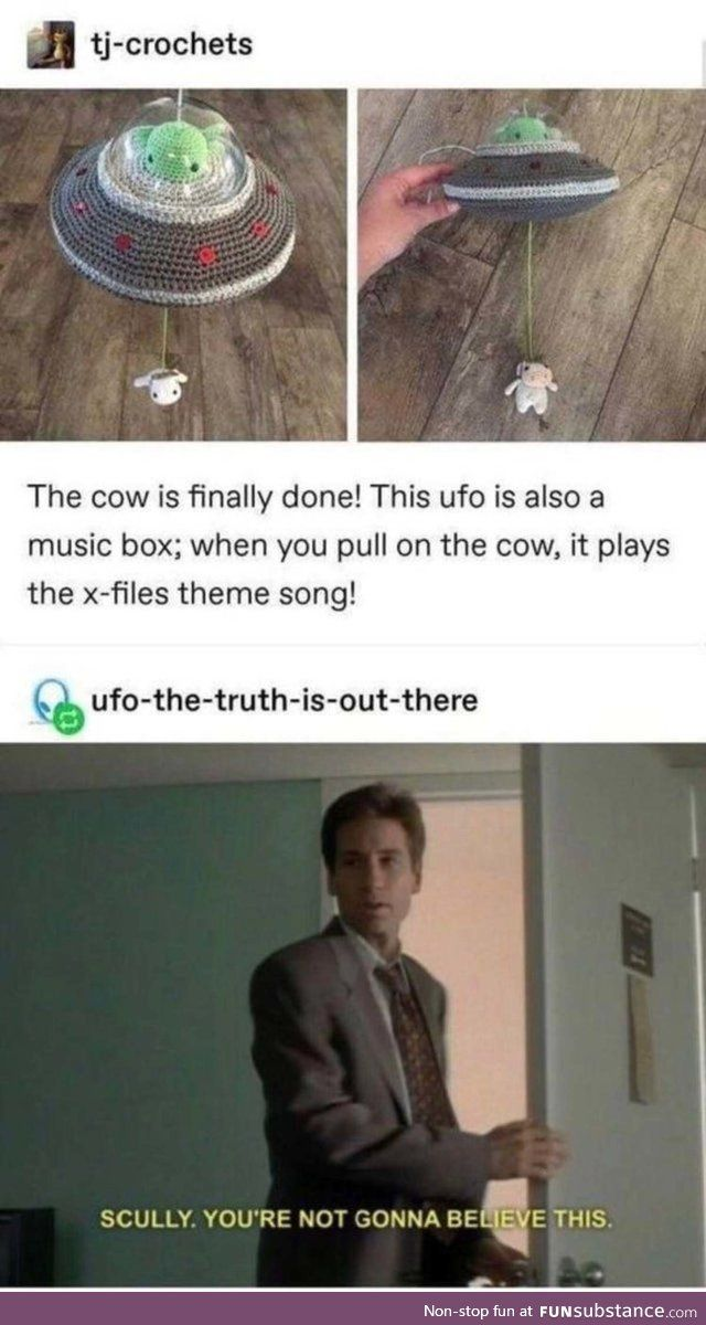 Concerned Astonishing Curlew Funsubstance In 2021 X Files Tumblr Funny Stupid Memes