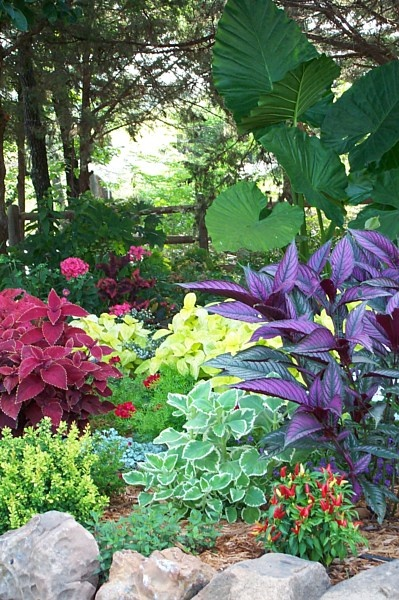 glorious color landscape plants natural stone trees perry oklahoma ok