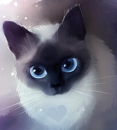Icey blue cat eyes (the love at first sight) <('o'<) <3