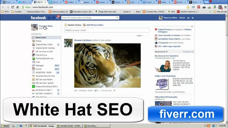 whitehatseo10: manually submit your website on PR10 to PR7 social bookmarks + Ping+ Report for $5, on fiverr.com  - White Hat SEO Service