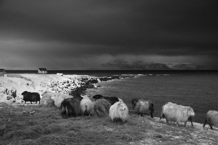 © Ragnar Axelsson // Leica M Monochrom // Leica M // Photography - Leica Camera AG
