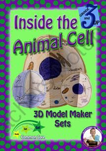 8 Best Images About Cell Project On Pinterest Models