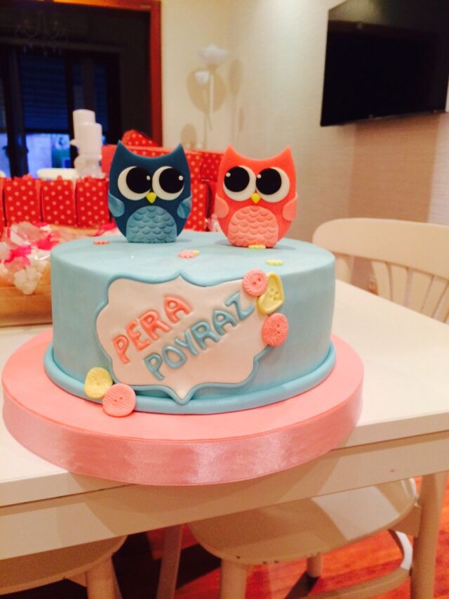 Owl cake for new twin babies..