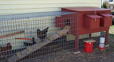 You can tuck a coop right next to your house or garage. If you live in a city, you can make use of your side yard. Note the clever use of ...
