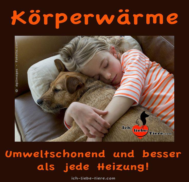 Körperwärme ist umweltschonend und besser als jede Heizung! >> http://www.ich-liebe-tiere.com/ <<