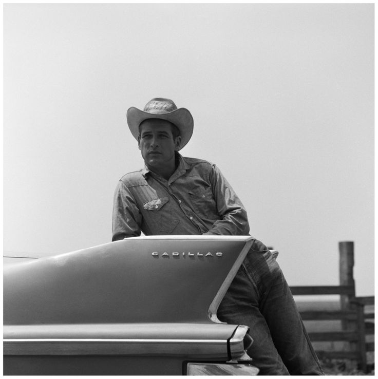 Paul Newman, 1963: Paul Newman, Cowboys Hats, Black White Photography, Newman Cadillac, 1963, Rocks Hudson, Paulnewman, Hollywood Icons, Doce Paul