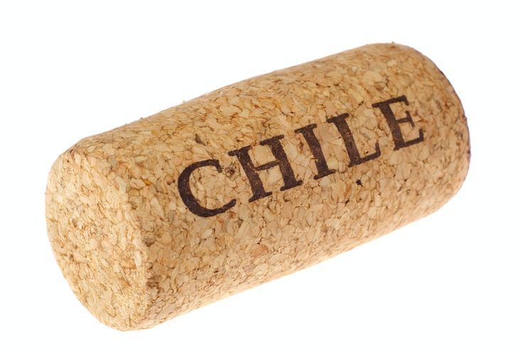 HISTORY OF CHILEAN WINE..  http://www.thewinesellar.net/chile.html