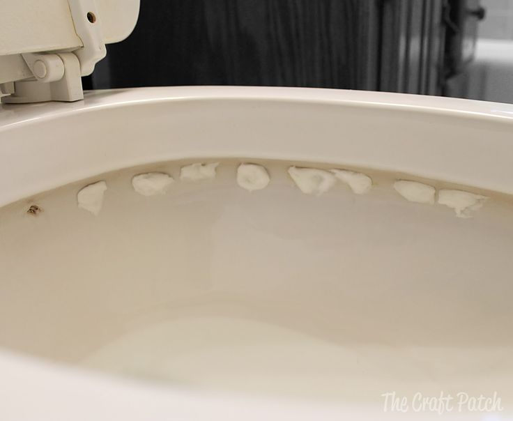 The Craft Patch: How To Clean The Holes In The Rim of Your Toilet Bowl