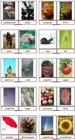 Autumn downloads - picture word cards (in Dutch, but the pictures are great)