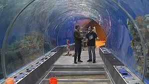 Aquarium The blue planet in Copenhagen, Denmark