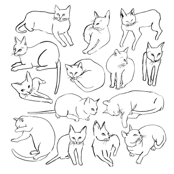 Picasso Cats | I