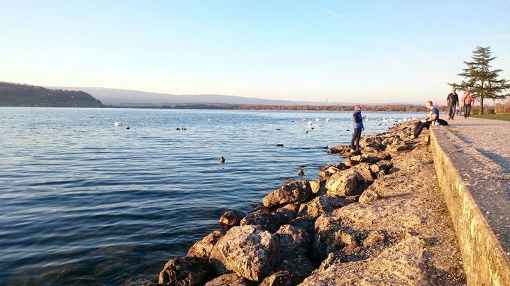 lake murten