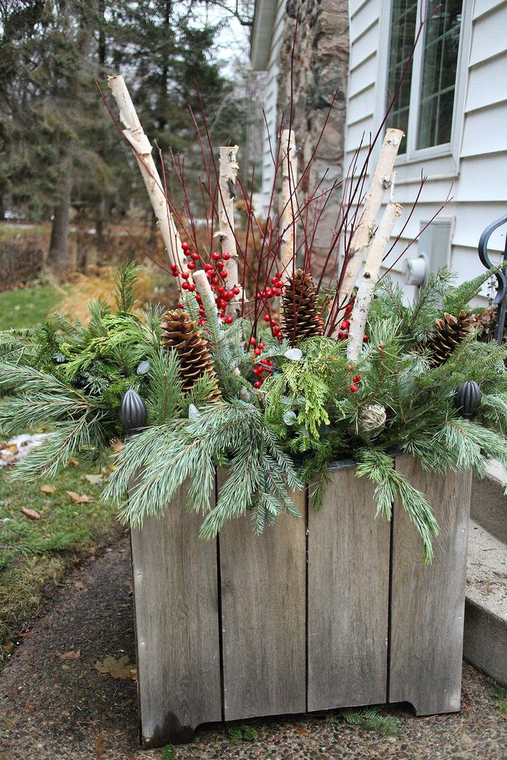 Holiday Container With Birch Dogwood Greens Pine Cones