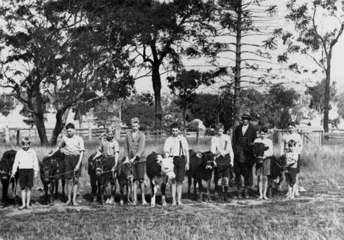 Tiaro School Calf Club circa 1930 (SLQ)
