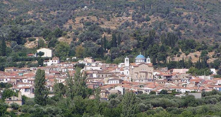 Village Pagondas from a distance
