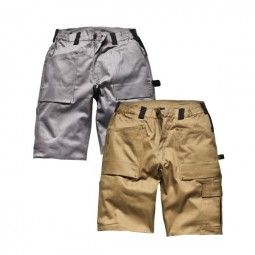 Dickies Shorts GDT210