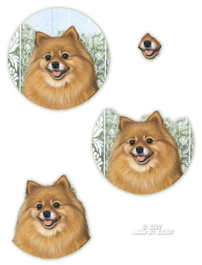 3D chien