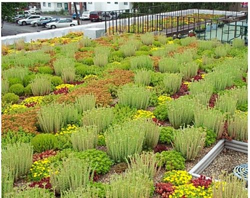 rooftop!: Green Roofs, Green Rooftops, Rooftops Gardens, Landscape Architecture, Greenroof, Roof Tops Gardens, Around The World, Gardens Low, Roof Gardens