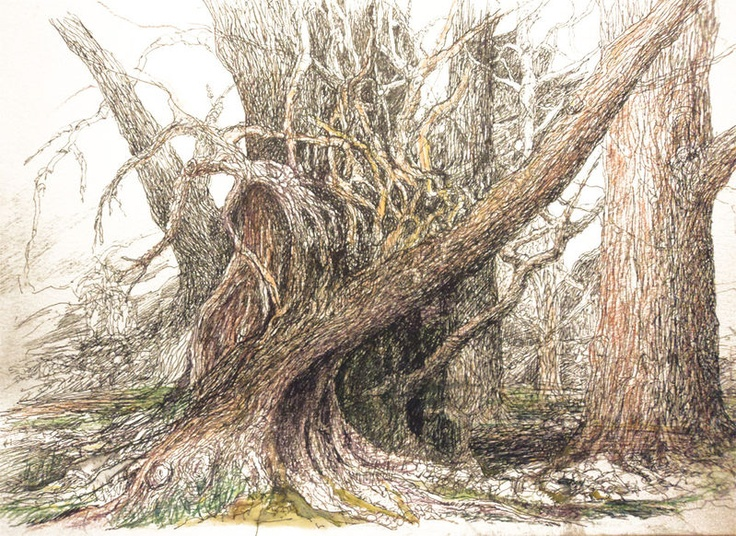 Gnarly tree drawing by Merv Scoble