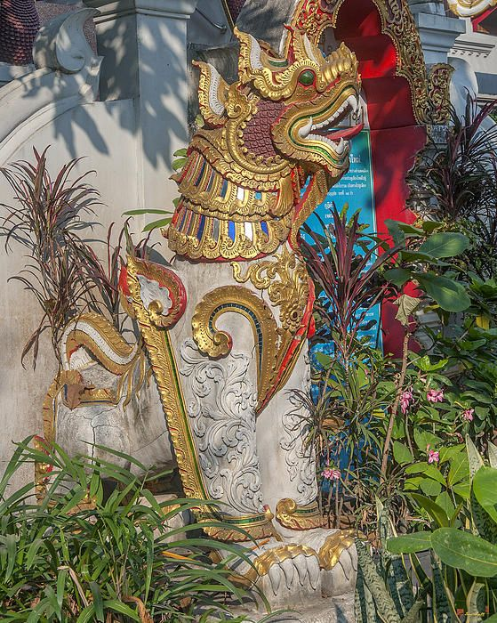 2013 Photograph, Wat Thatkam Singh Guardian, Tambon Haiya, Mueang Chiang Mai District, Chiang Mai Province, Thailand, © 2014. ภาพถ่าย ๒๕๕๖ วัดธาตุคำ ผู้ปกป้องสิงห์ ตำบลหายยา เมืองเชียงใหม่ จังหวัดเชียงใหม่ ประเทศไทย