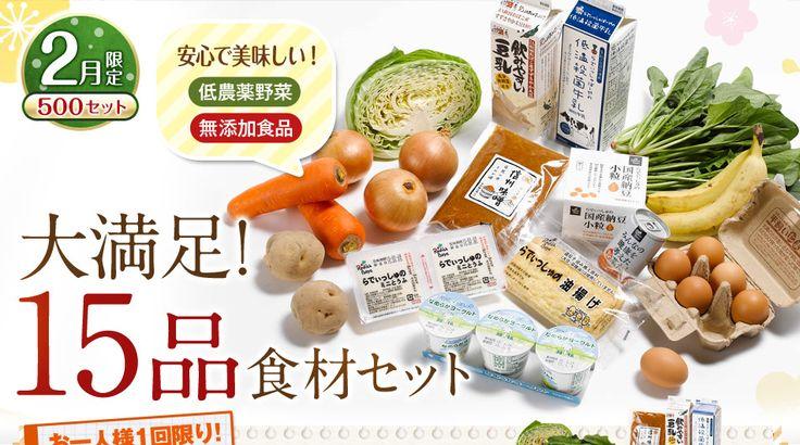 らでぃっしゅぼーや 2月限定500セット 安心で美味しい!低農薬野菜 無添加食品 大満足!15品食材セット