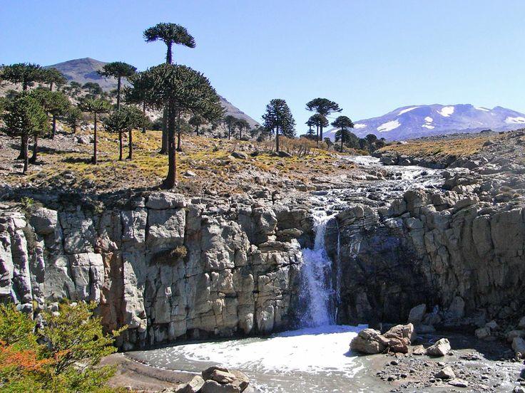 10 paisajes de ARGENTINA que no conocías - Blog de viajes y turismo, ¡Disfruta de la Patagonia Termal en Copahue-Caviahue!  Copahue-Caviahue  La zona de Copahue-Caviahue muy cerca del límite con Chile, en Neuquén,es uno de los centros turísticos menos conocidos de la Argentina, aquí pueden encontrarse no solo hermosos paisajes donde se destacan bosques de araucarias, sino que además cuenta con lagunas de aguas termales. De hecho, a esta zona se la conoce también comoPatagonia Termal.