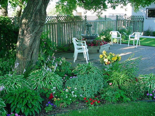 Shade Tree Flower Beds | Patio, Shade Tree, Lounging, Hosta, Impatients,