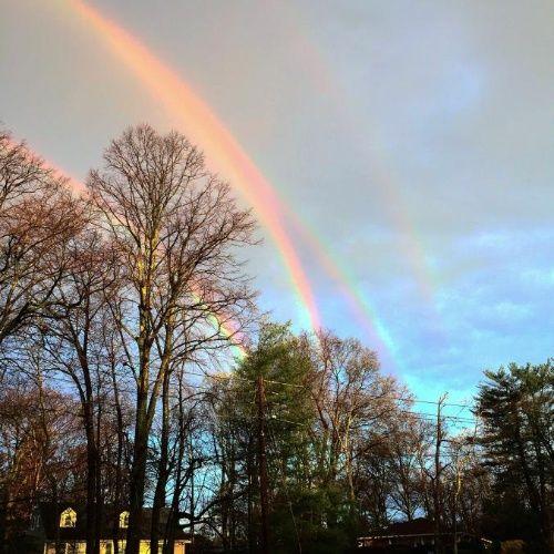 幻の「4重虹」、写真はホンモノ? | ナショナルジオグラフィック日本版サイト