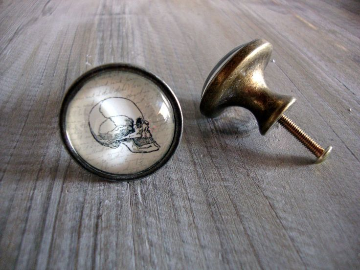 Skull Drawer Knob Quirky Vintage Style Brass Cupboard Door Knobs Handles  Pulls