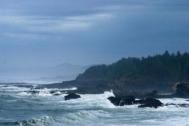 View of the Oregon coast from the shore at The Camas Inn and Spa