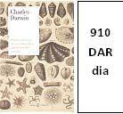 """Siempre es interesante leer y releer las obras de Darwin por la riqueza de los datos que aporta a sus reflexiones sobre """"el misterio de los misterios"""" que subyace en el principio de la existencia. Aventurarse en este Diario de los primeros tiempos de un Darwin joven, abierto a las respuestas que da la Naturaleza, tiene el aliciente, además, de descubir el germen de su gran obra, El origen de las especies."""
