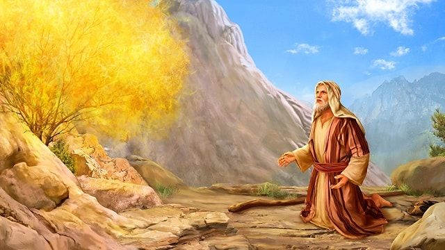 Exodus 1 4 The Story Of Moses Bible Pictures Bible Stories Bible