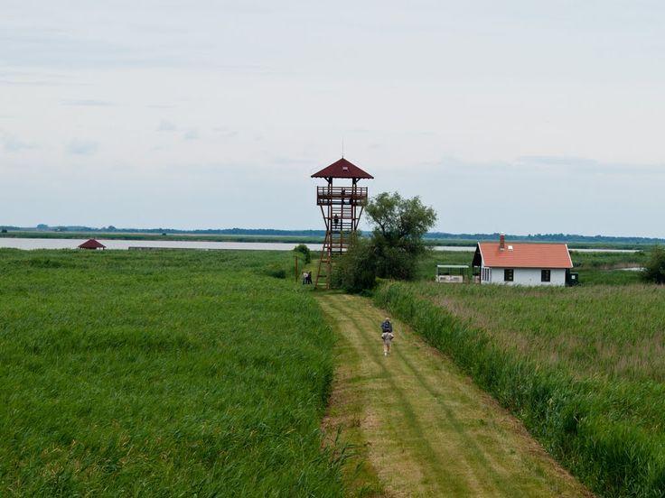 Panoramio - Photo of Madárles / Bird watching tower, Hortobágyi ...