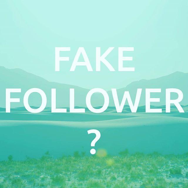Monday thought-starter: do fake followers harm your organic reach? #socialmedia #marketing  .