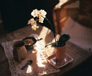 flower | Tumblr