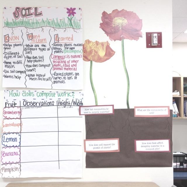 Teaching Plant and soil unit