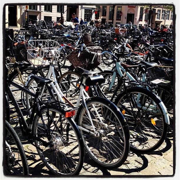 #copenaghen #bikes #denmark