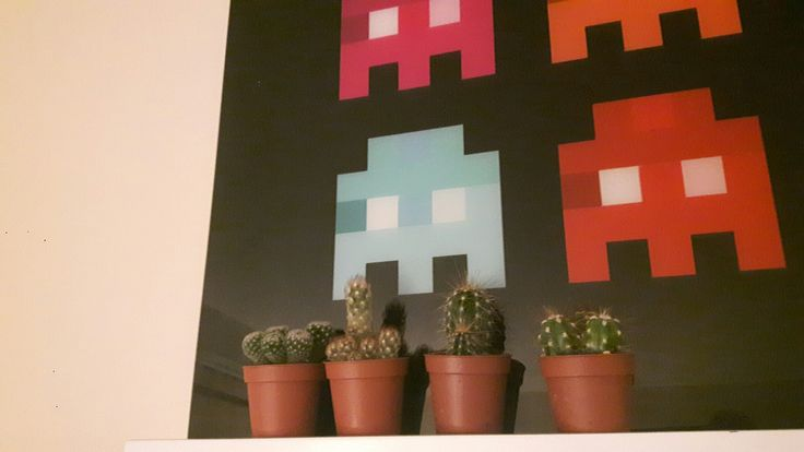 Passion cactus space invaders