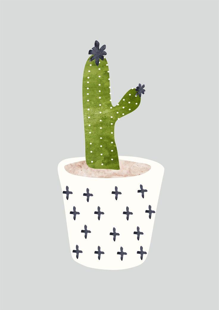 kaktuso1.jpg (1130×1600)