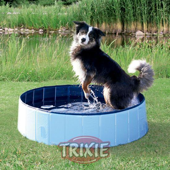 Adi s a los d as de calor para tu mascota con la nueva for Piscina perros