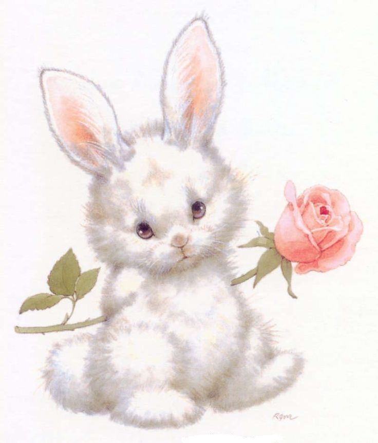 заяц дарит цветы картинки курицей, классический